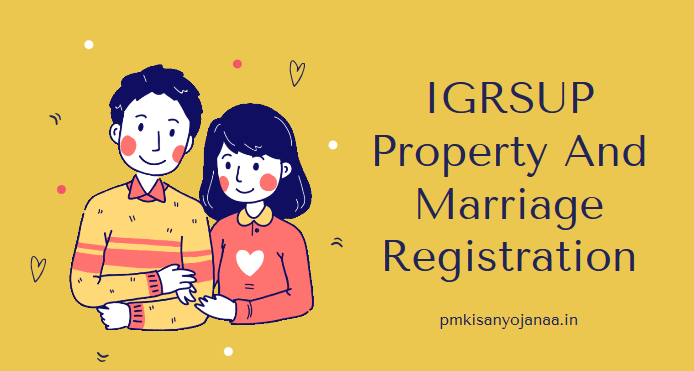 igrsup property and marriage registration